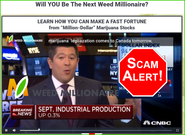 Official Weeds Millionaire Video